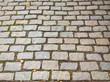 Paving stone.