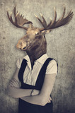 Moose in clothes. Concept graphic in vintage style. - 131433405