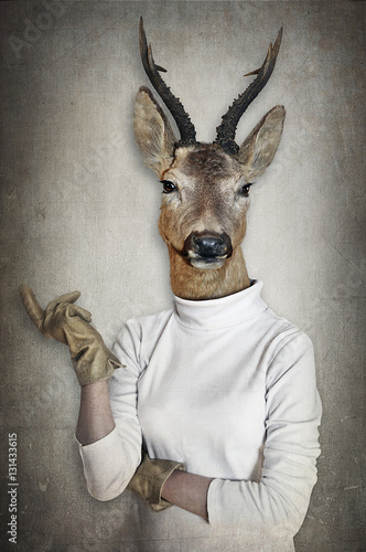 Poster Animaux de Hipster Deer in clothes. Concept graphic in vintage style.