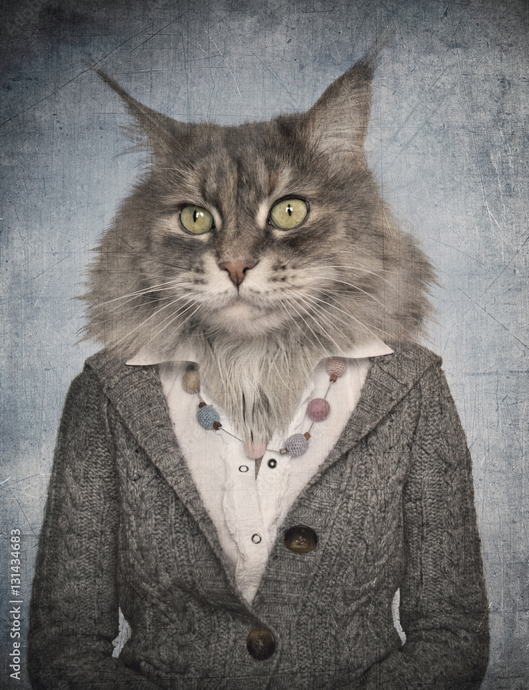 Cat in clothes. Concept graphic in vintage style.