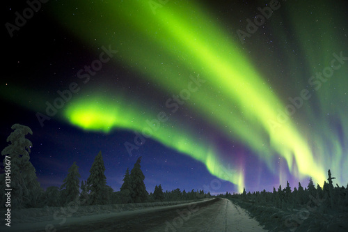 Poster Aurore polaire Northern Lights - Aurora borealis over snow-covered forest. Beautiful picture of massive multicoloured green vibrant Aurora Borealis, Aurora Polaris, also know as Northern Lights in the night sky.