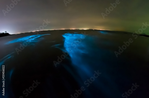 Bioluminescent plankton. Glowing wave with long exposure. Wallpaper Mural