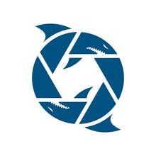 Photography Logo. Shark Head As Symbol Of Photography. Logo Vector.