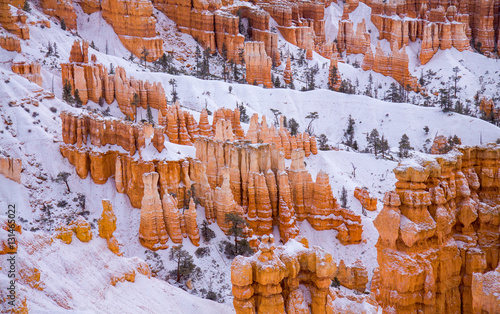 Snow on the Hoodoos - An overnight snowfall highlights the hoodoos in as seen from Sunset Point,  Bryce Canyon, Utah Canvas-taulu