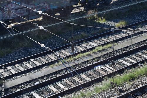 Fotografia, Obraz  Vías de trenes.