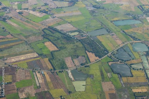 Valokuva  Arial view of green rice field