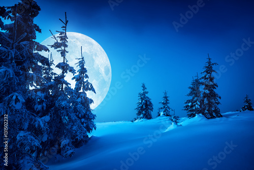 Fotobehang Nacht Carpathian moonlit night
