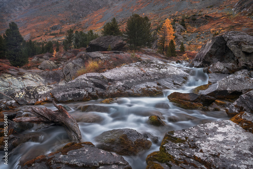 Photographie  Shallow Rocky Stream Long Exposure View With Pine Trees, Altai Mountains Highlan