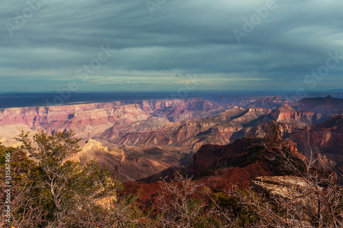Foto op Plexiglas Bruin Grand Canyon