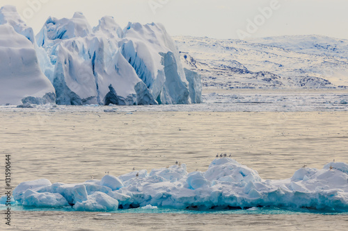 Printed kitchen splashbacks Glaciers Huge drifting blue icebergs with sitting seagulls at Ilulissat f