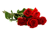 Red Rose Bouquet Isolated On W...