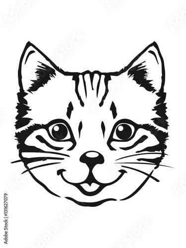 Poster Croquis dessinés à la main des animaux Cat baby cute kitten