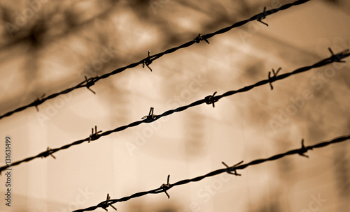 Fotografiet  barbed wire lines and background blurred with other barriers