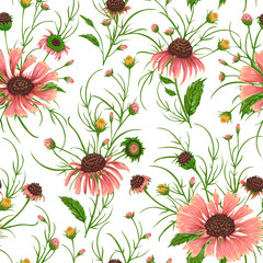 Panel Szklany Seamless pattern with chamomile flowers. Rustic floral background. Vintage vector botanical illustration in watercolor style.
