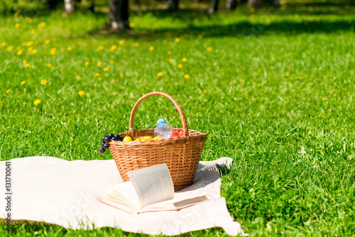 Aluminium Prints Picnic picnic basket with fruit on a plaid in the summer park