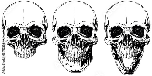 Fotografiet White graphic human skull with black eyes set
