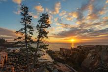 Acadia National Park Coastline...