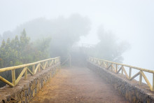 Mountain Trail In The Foggy Day, Tenerife