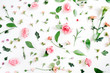 canvas print picture - Floral pattern made of pink and beige roses, green leaves, branches on white background. Flat lay, top view. Valentine's background
