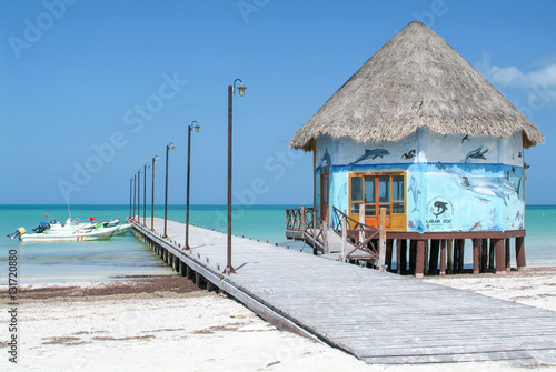 Fotografie, Obraz  The coast with wooden pier of Holbox Island