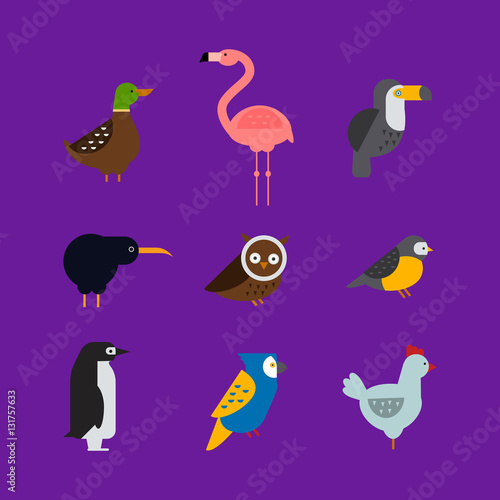 Poster Birds vector set illustration isolated
