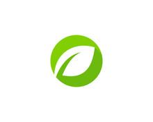 Initial Letter O Green Leaf Logo Design Element