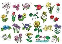花いろいろ(墨、手描き)