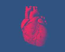 Engraving Human Heart Illustration