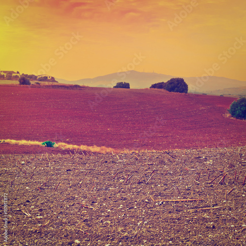 Tuinposter Crimson Sunset