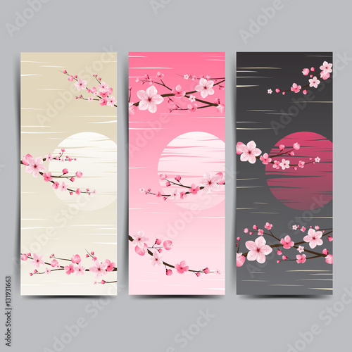 cherry blossom realistic vector, sakura, japan, background Illus Wall mural