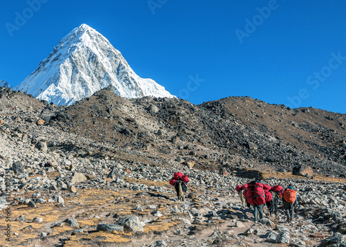 Valokuvatapetti Caravans with cargoes for climbers on the path between the Lobuche and Gorak She