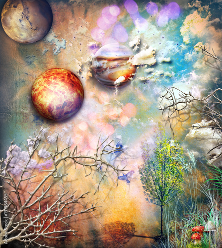 Wall Murals Imagination Enchanted forest with magic mushrooms