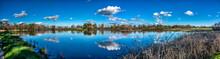 Wetlands Panorama