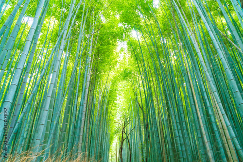 Foto auf Leinwand Bambusse Path to bamboo forest at Arashiyama in Kyoto.