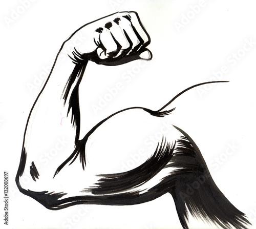Foto Biceps