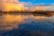 Goldene Wolken / Wolkenspiegelung auf einer Wiese bei Dannenberg (Landkreis Lüchow-Dannenberg, Niedersachsen). Aufgenommen während der goldenen Stunde vor dem Sonnenuntergang vom 24. Februar 2016.