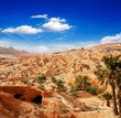 Oasis in sand and stone desert landscape :)