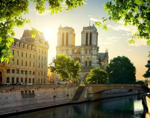 Fototapeta na wymiar Notre Dame cathedral