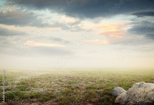 Simple beautiful surreal landscape with grass on misty sky background