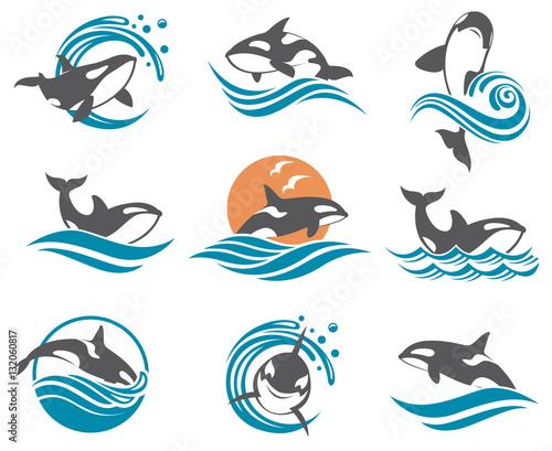 Fototapeta premium kolekcja z abstrakcyjnymi symbolami fal wielorybów i morza