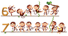 Monkeys And Number Six And Seven
