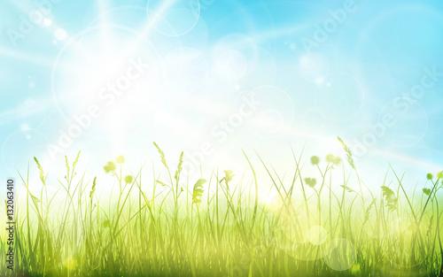 Zielona trawa, niebieskie niebo, wiosna zamazywał bokeh tło