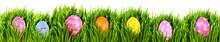 Hand Painted Easter Eggs Nestl...