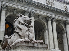 New York Library Lion