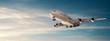 Airplane panorama