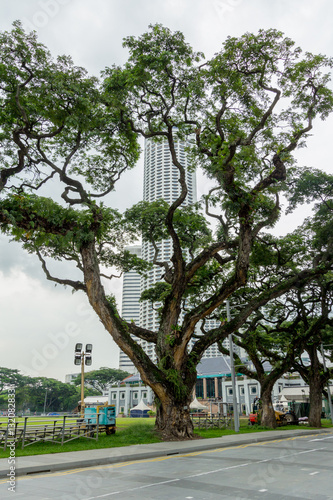 Photo  Modern Singapore city and state