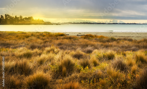 Fotografia, Obraz Golden meadow at sunset