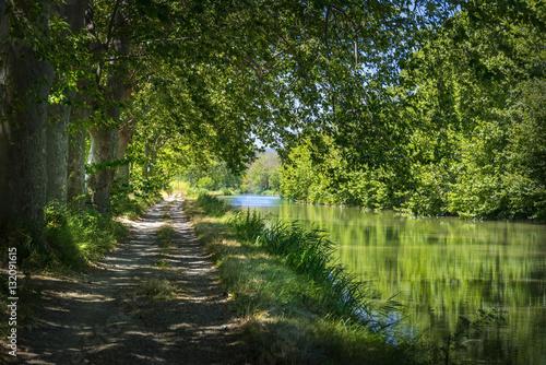 Fotografie, Obraz  Vue du Chemin de hallage sur le bord du Canal du Midi