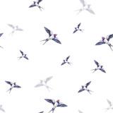 Piękna dymówka na białym tle. Akwarela ilustracja Wiosenny ptak przynosi miłość. Praca ręczna. Wzór - 132119295