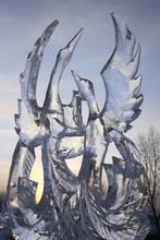 Ice Sculpture Of Swans